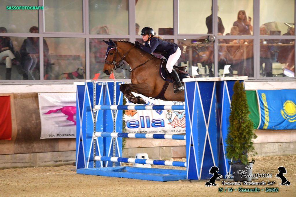 Cavallo femmina baia Bwp in vendita