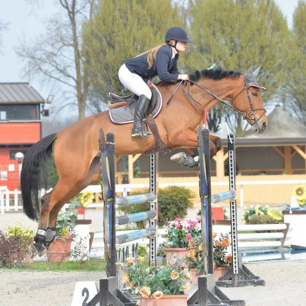 Cavallo in vendita femmina baia italiana del 2012