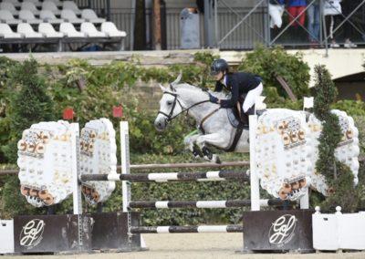 Pony grigio Connemara del 2011  ( Cav.268)