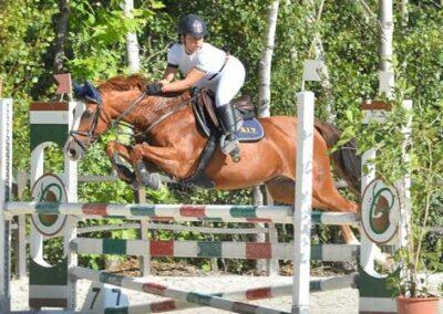 Pony saura tedesca del 2003 ( Cav.294)