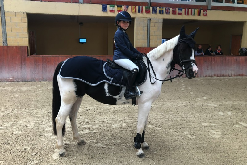 quilt-blanket-waterproof-pony-cavalli-online-bertero
