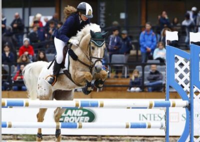 Pony Appaloosa olandese del 2009 ( Cav. 297)