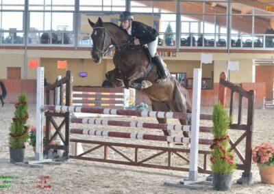 Femmina Saura Italiana del 2009 ( Cav. 305)
