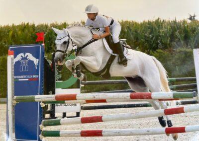 Pony grigio SWE del 2008 ( Cav.352 )